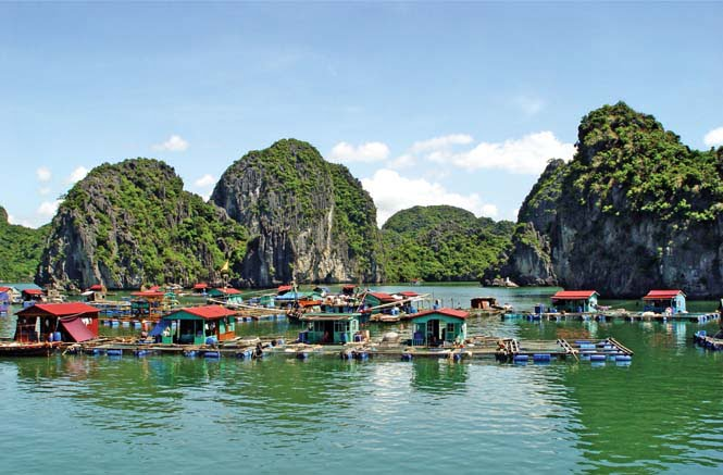 HA LONG BAY 3 DAYS 2 NIGHTS DRAGON CRUISE 3