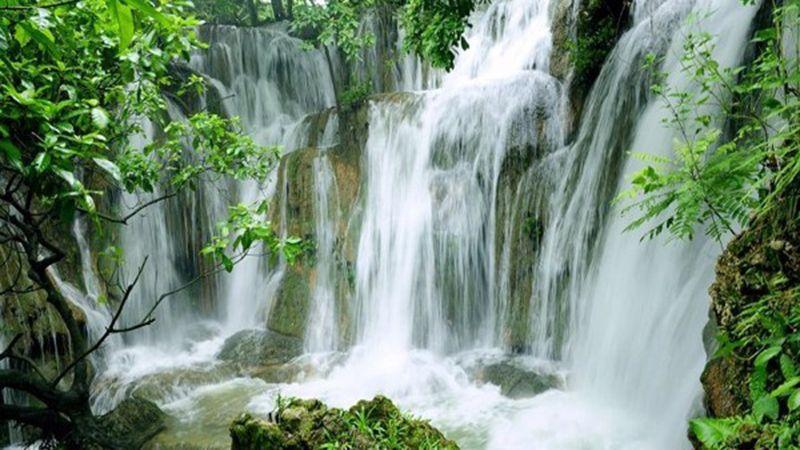 Tour du lịch Đà Lạt 1 ngày Ghé thăm vùng quê thơ mộng 3