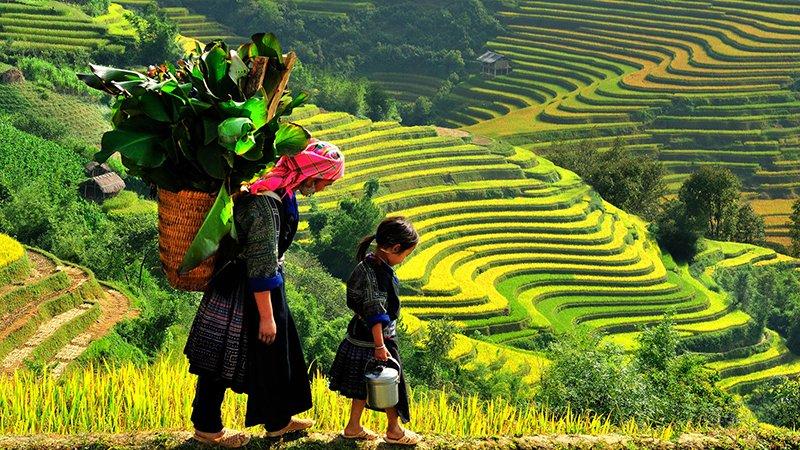 Tour du lịch xuyên Việt 16N15D từ TPHCM 14