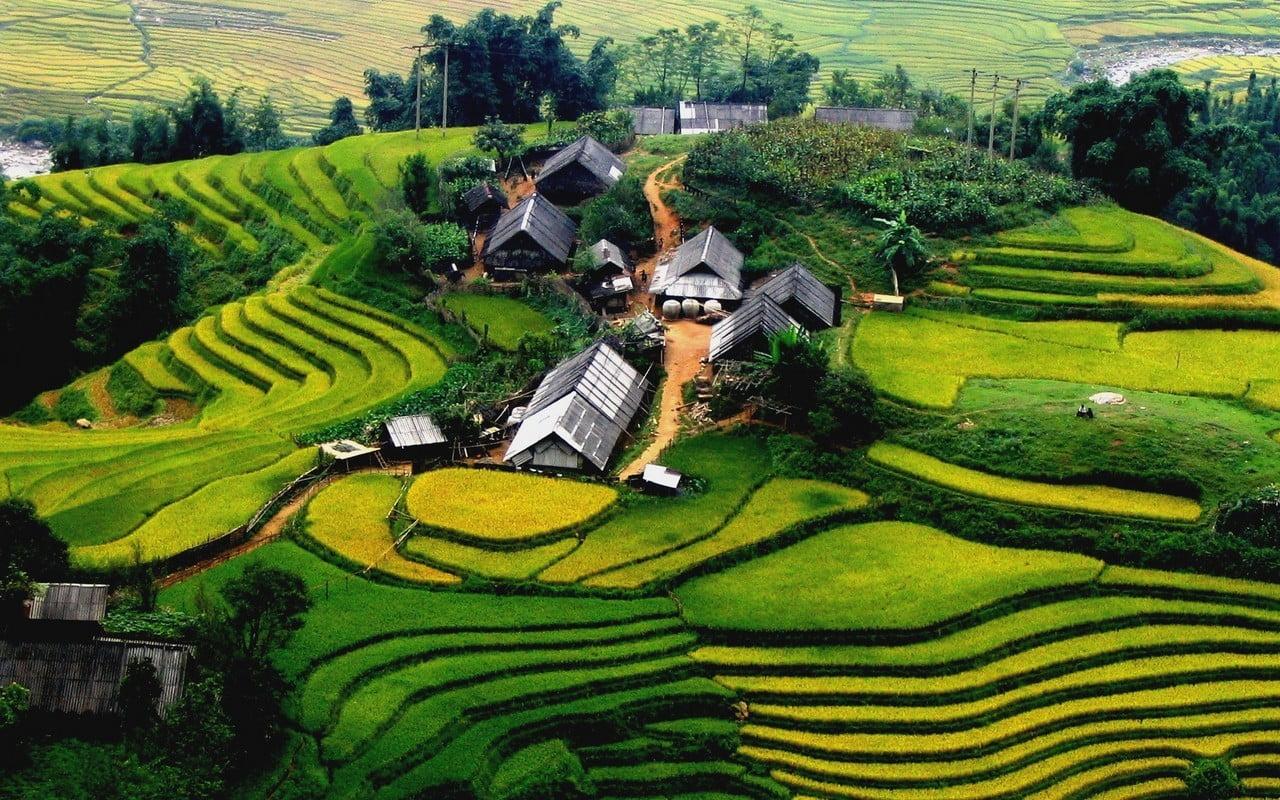 TOUR HA NOI – HA LONG – SAPA - DA NANG – HOI AN – HUE – HCMC – MEKONG DELTA 4